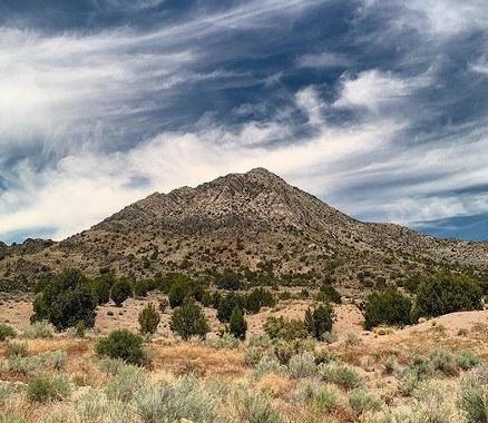 Oak Springs Trilobite Site