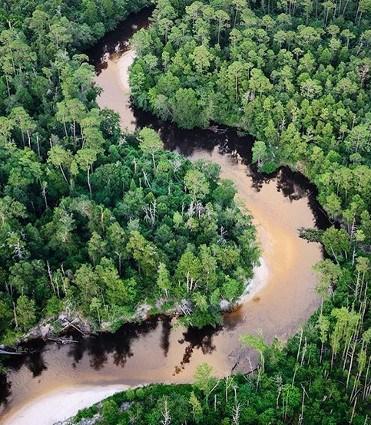 Perdido River